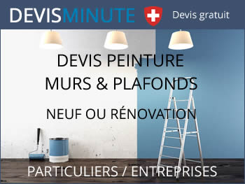 prix travaux de peinture mur et plafond neuf et r novation devis gratuit. Black Bedroom Furniture Sets. Home Design Ideas